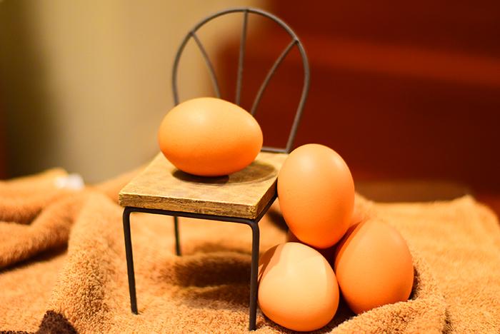 高級卵 醍醐卵
