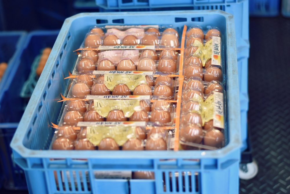 卵の出荷写真